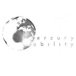 Carton 448x448x448 - Mercury